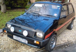 Austin (MG) Metro 3dr - Polycarbonate Rear Windscreen